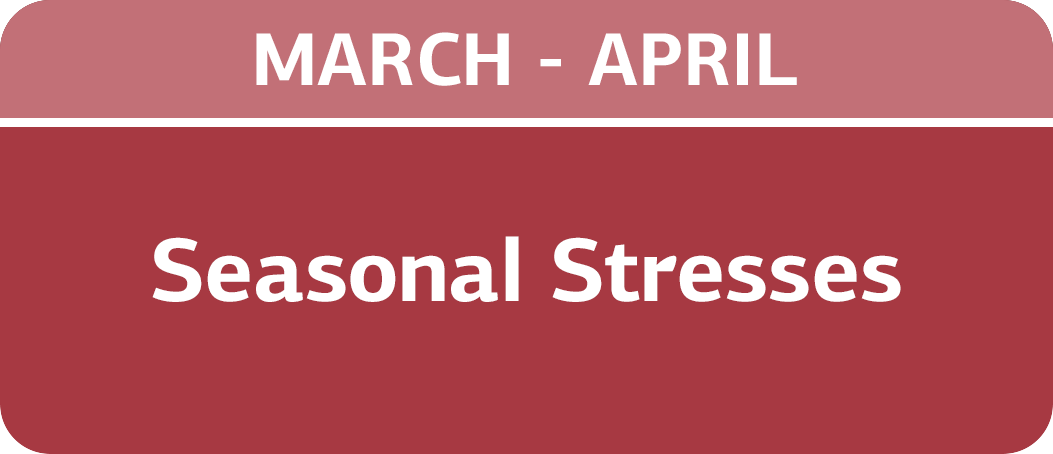 March/April - Seasonal Stresses