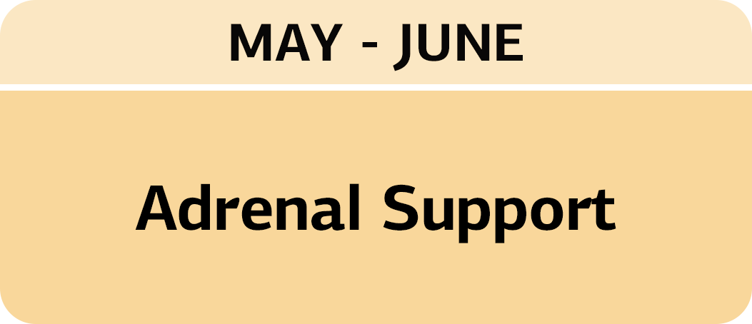 May/June - Adrenal Health