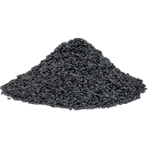 Black Cumin seed is the main ingredient in Black Cumin Seed Forte from Standard Process.
